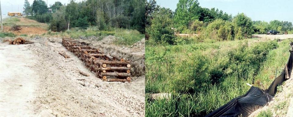 (2003-2004) Pottageville CreekTributary